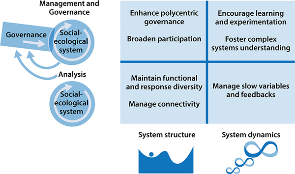 Resilience Oxford Research Encyclopedia Of Environmental Science